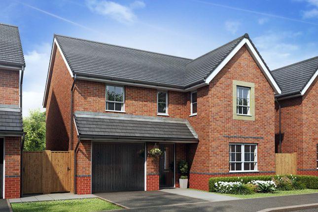 "Thumbnail Detached house for sale in ""Hale"" at Stretton Road, Stretton, Warrington"