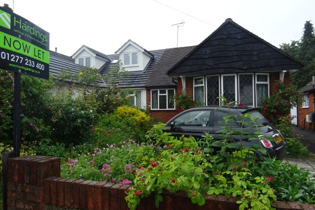 Thumbnail Semi-detached bungalow to rent in Hunter Avenue, Shenfield