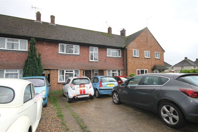 Thumbnail Property to rent in Larch Avenue, Guildford, Surrey