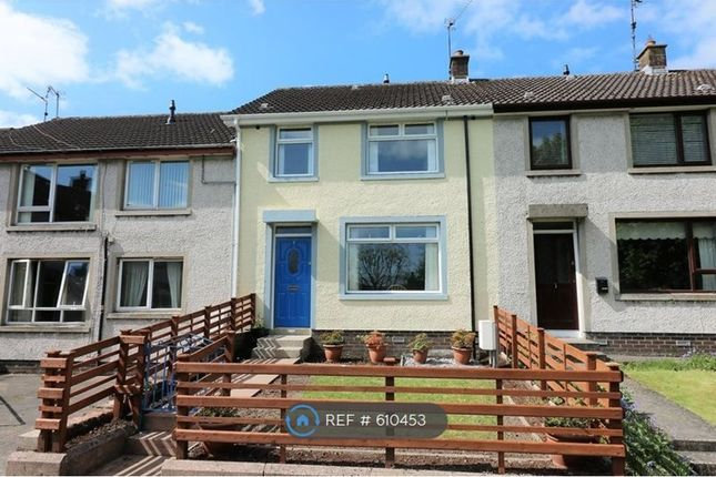 Thumbnail Terraced house to rent in Victoria Park, Banbridge