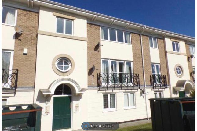 Thumbnail Flat to rent in Hawkesbury Mews, Darlington