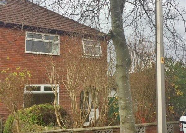 Thumbnail Semi-detached house to rent in Graham Avenue, Great Sutton, Ellesmere Port