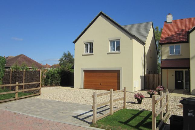 Thumbnail Detached house for sale in Golf Links Road, Berrow