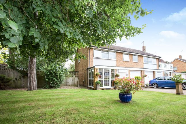 Thumbnail Semi-detached house for sale in Newmarket, Suffolk, .