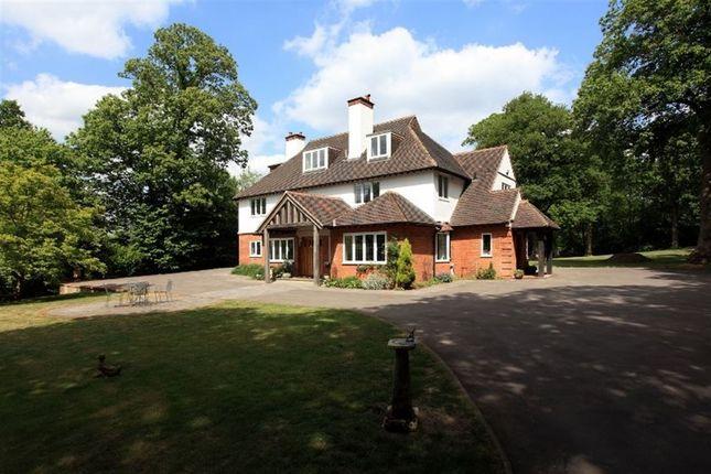 Thumbnail Detached house to rent in Blackhall Lane, Sevenoaks