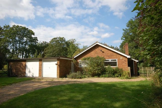 Thumbnail Detached bungalow to rent in Old Uxbridge Road, West Hyde