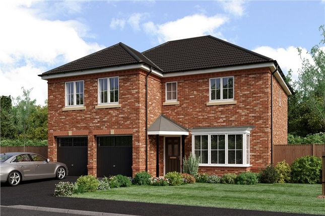"Thumbnail Detached house for sale in ""Jura"" at Joe Lane, Catterall, Preston"