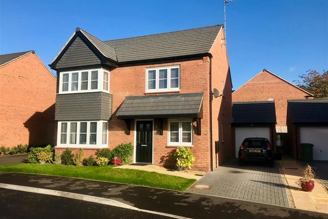 Thumbnail Property to rent in Pearl Brook Avenue, Stafford