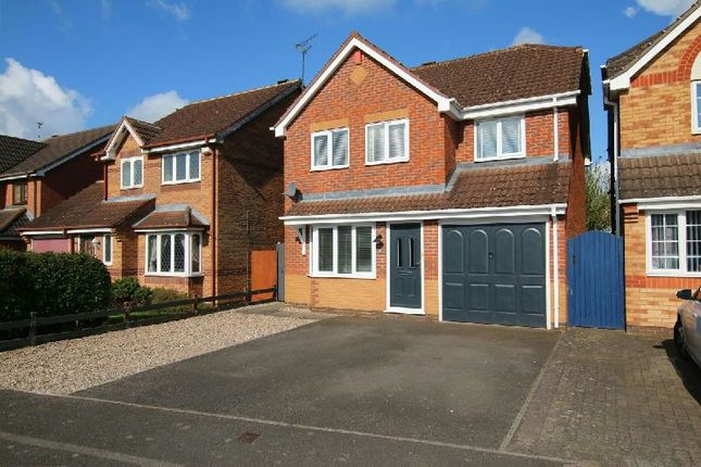 Thumbnail Detached house for sale in Muntjack Road, Whetstone, Leicester