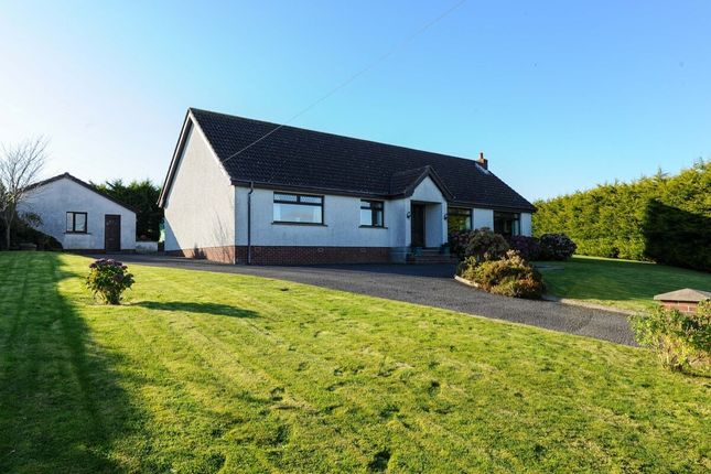 Thumbnail Bungalow for sale in Killinchy Road, Comber, Newtownards