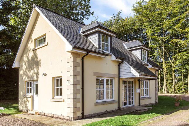 Thumbnail Detached house for sale in Coupar Angus Road, Blairgowrie
