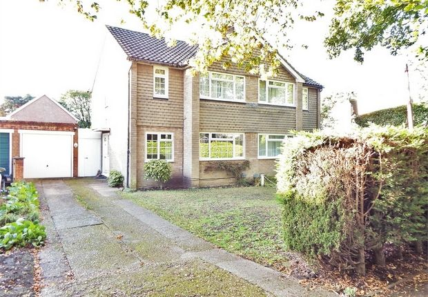 Thumbnail Semi-detached house for sale in Albert Road, Farnborough, Hampshire