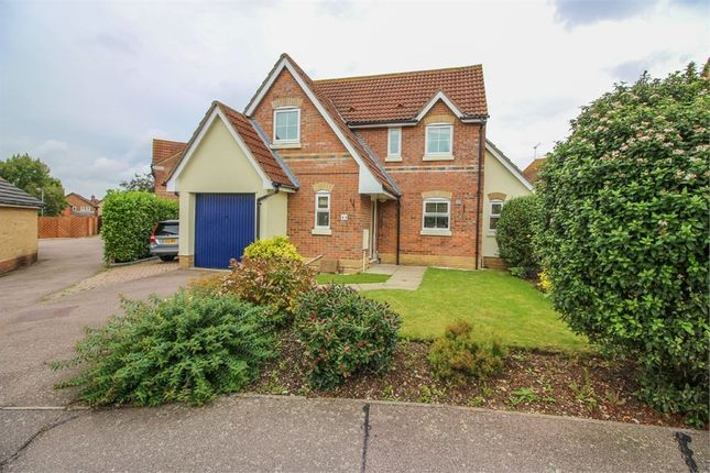 Thumbnail Detached house for sale in Albert Gardens, Church Langley, Essex