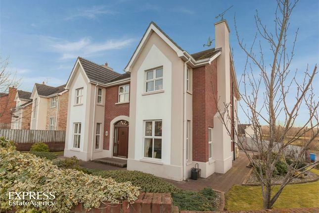 Thumbnail Detached house for sale in Brookview Glen, Eglinton, Londonderry