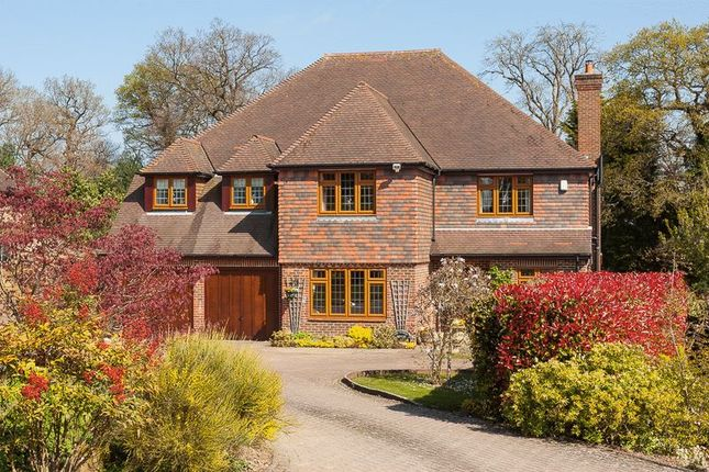 Thumbnail Detached house for sale in Broad Oak, Brenchley, Tonbridge