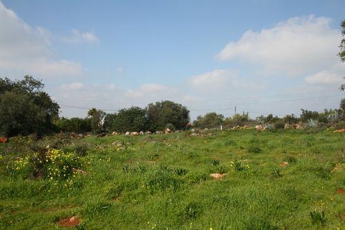 Goldra, Loule, Loulé, Central Algarve, Portugal