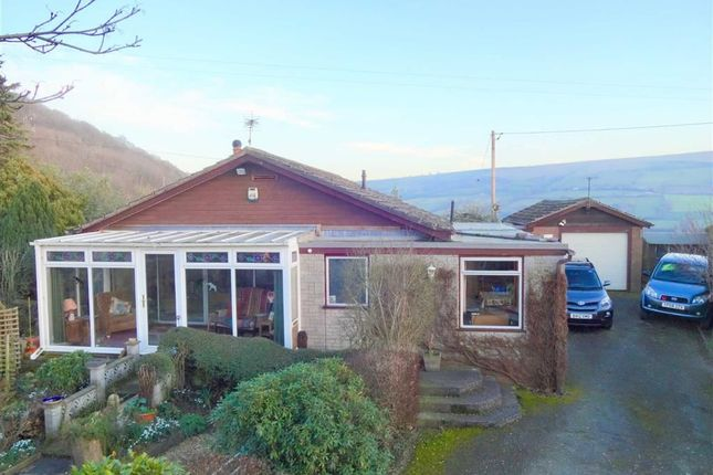 Thumbnail Bungalow for sale in Delfan, Moel Y Golfa, Trewern, Welshpool, Powys