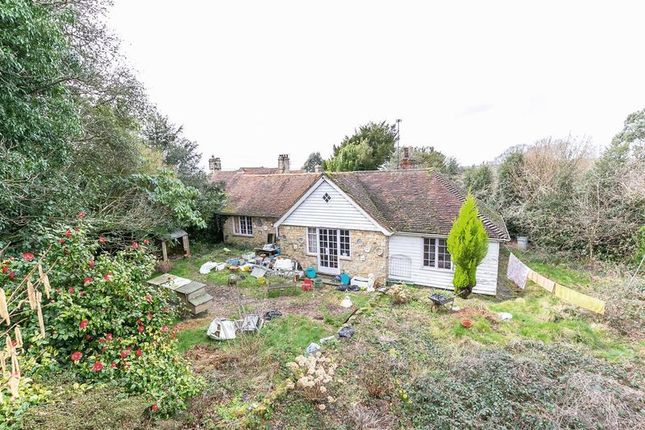Thumbnail Detached bungalow for sale in Birch Grove, Horsted Keynes, Haywards Heath