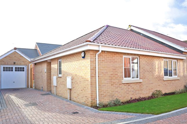 Thumbnail Semi-detached bungalow for sale in Meadowlands, Wrentham, Beccles