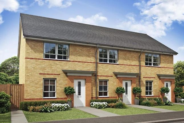 "Thumbnail Semi-detached house for sale in ""Kenley"" at Tenth Avenue, Morpeth"