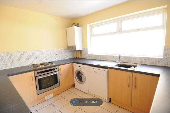 Thumbnail Terraced house to rent in Pomona Street, Sheffield
