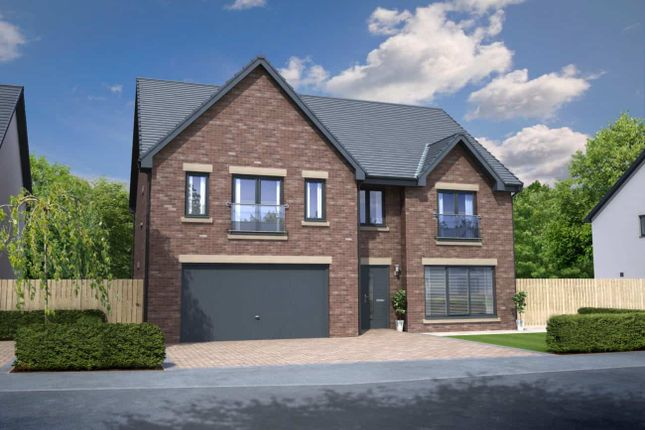"Thumbnail Detached house for sale in ""Nasmyth Garden Room"" at Cotcliffe Way, Nunthorpe, Middlesbrough"