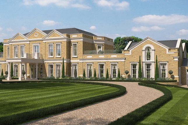 Thumbnail Detached house for sale in High Breck, Spatts Lane, Headley, Hampshire