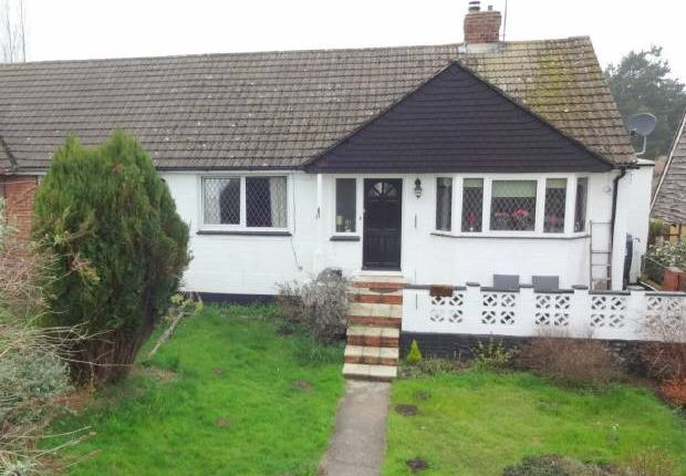 Thumbnail Bungalow for sale in East Street, Addington, West Malling