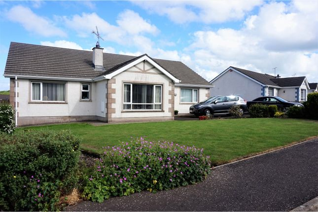 Thumbnail Detached bungalow for sale in Somerset Park, Coleraine