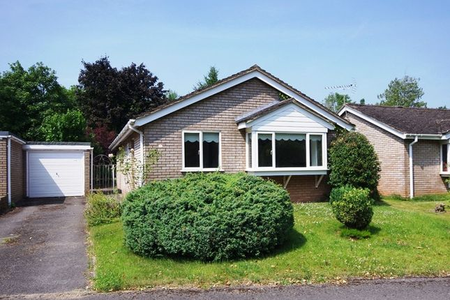 Thumbnail Bungalow to rent in Lakeside, Newent