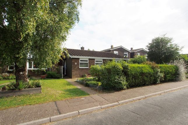 3 bed detached bungalow for sale in Ashleigh Gardens, Wymondham