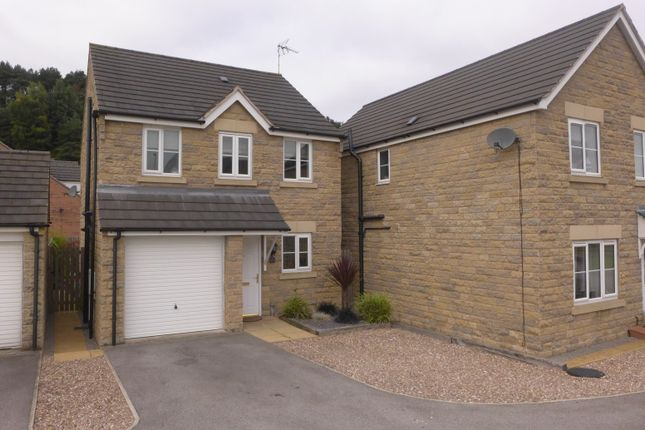 Thumbnail Detached house to rent in Stone Bank, Mansfield