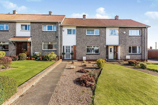 Thumbnail Terraced house for sale in Tower Terrace, Kirkcaldy, Fife