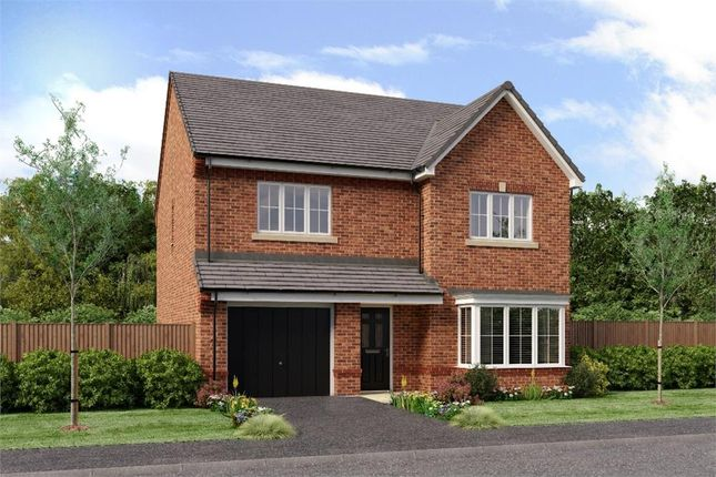 "Thumbnail Detached house for sale in ""The Ryton"" at Off Success Road, Houghton Le Spring"