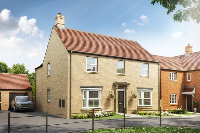 """Thumbnail Detached house for sale in """"The Whittlebury"""" at Heathencote, Towcester"""