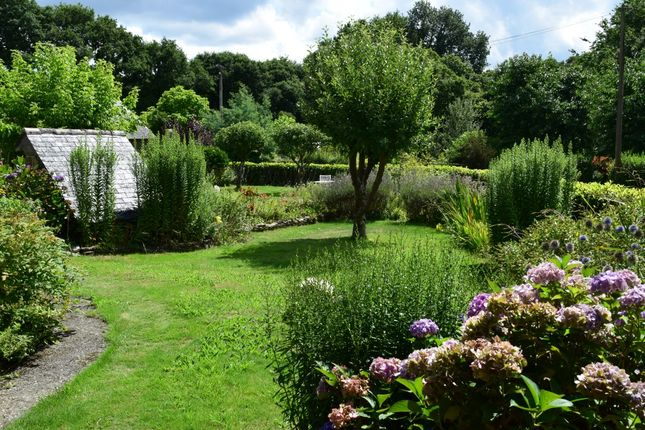 Commercial Property Brittany France