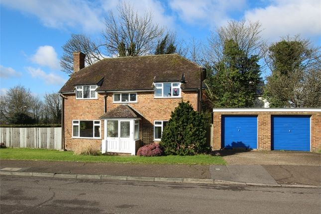 Thumbnail Detached house for sale in The Dene, Hastings, East Sussex