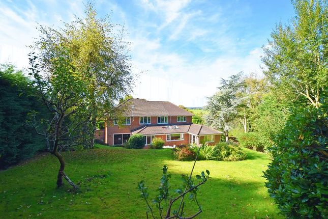 Thumbnail Detached house for sale in St. Marys Garth, Buxted, Uckfield