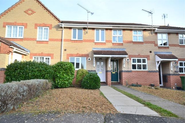 Thumbnail Terraced house to rent in Lexham Road, King's Lynn