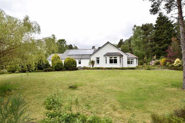 Thumbnail Detached bungalow for sale in Lamington, Kildary, Invergordon