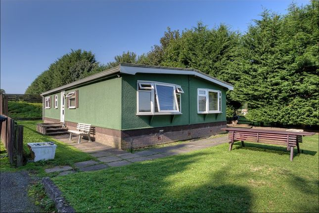 Thumbnail Equestrian property for sale in Off Glasgow Road, Dumfries