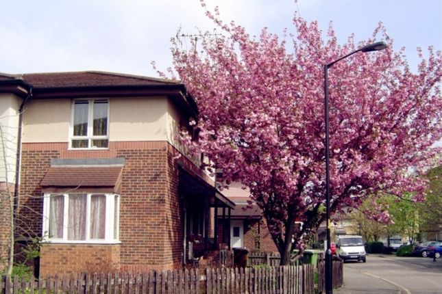 Thumbnail Detached house to rent in Chaucer Drive, London