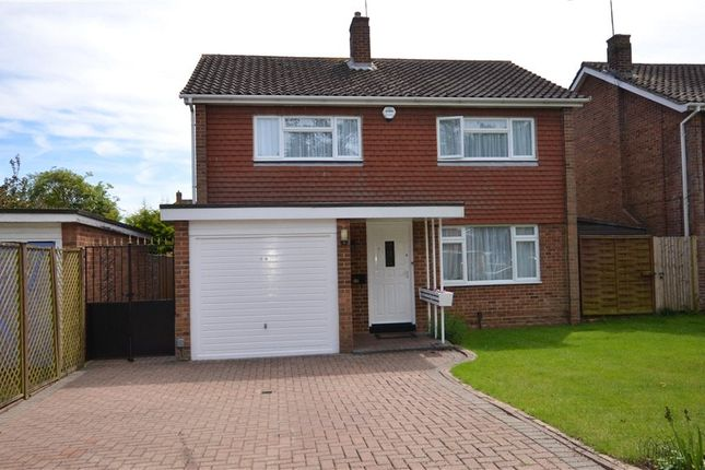 Thumbnail Detached house for sale in Webster Close, Maidenhead, Berkshire