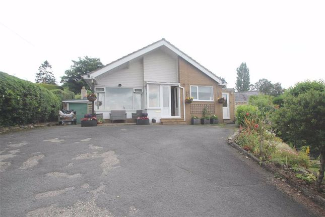 4 bed detached bungalow to rent in Smelthouse Lane, Pant, Shropshire SY10