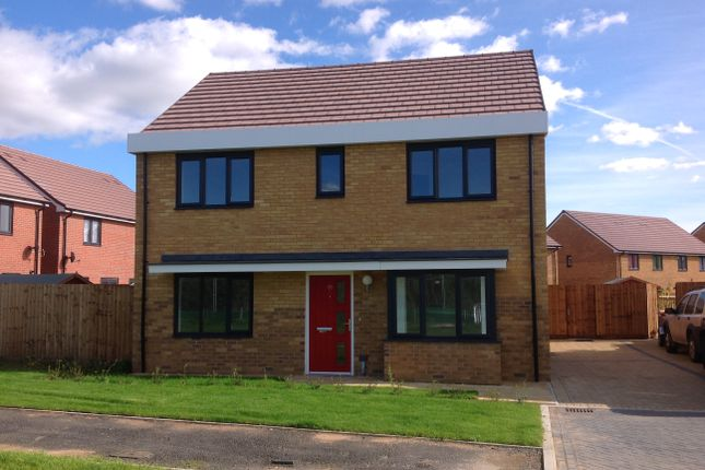 Thumbnail Detached house for sale in Turnstone Close, East Tilbury