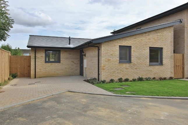 Thumbnail Detached bungalow for sale in Brickhills, Willingham, Cambridge