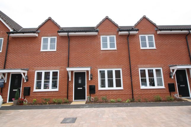 Thumbnail Terraced house to rent in Tuckwell Grove, Pinhoe, Exeter