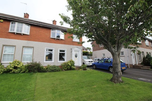 Thumbnail Semi-detached house to rent in Bexley Road, Bangor