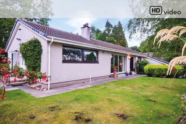 Thumbnail Bungalow for sale in Queen Street, Helensburgh