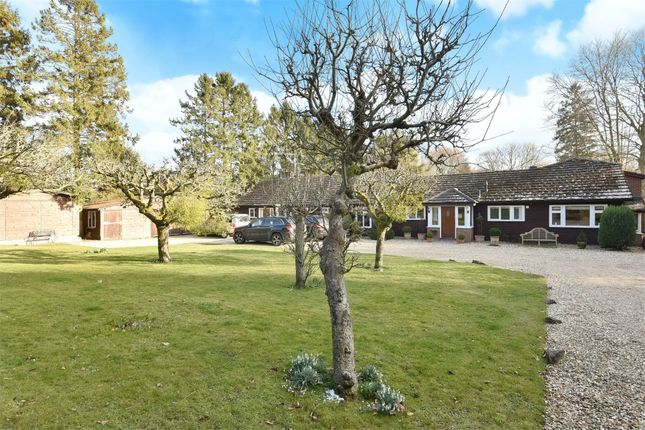 Thumbnail Detached house for sale in Main Road, Itchen Abbas, Hampshire
